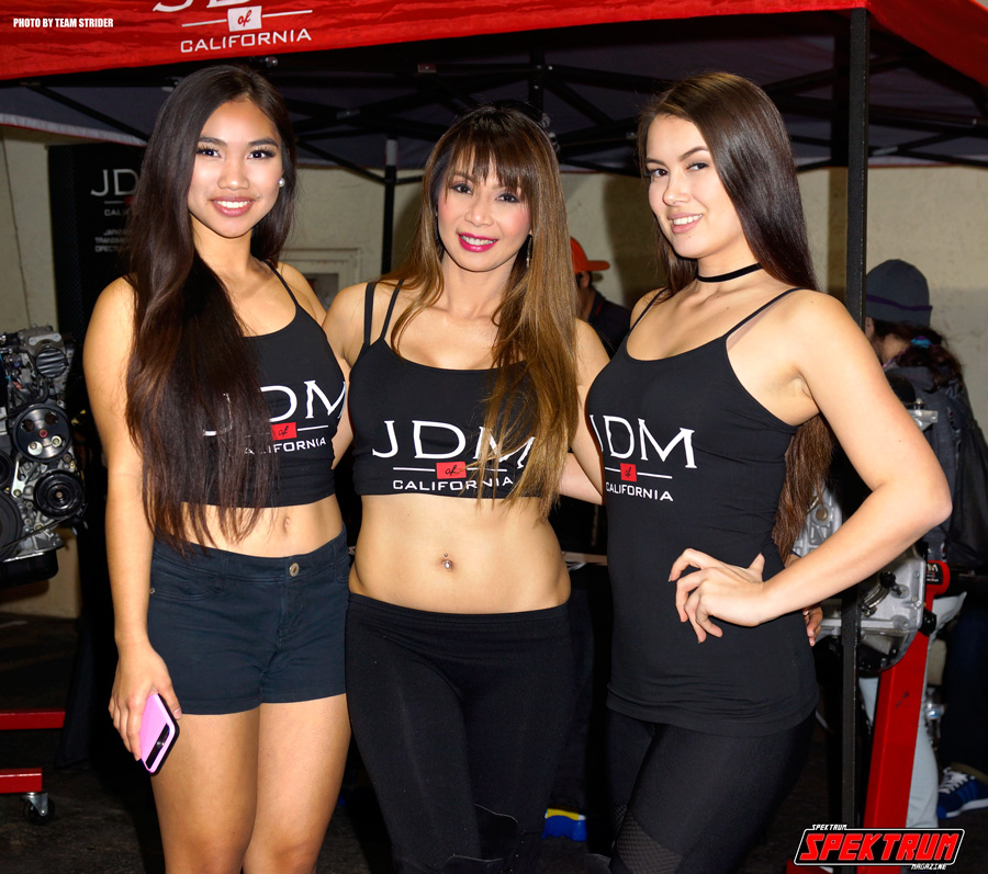 The beautiful promotional models of JDM of California