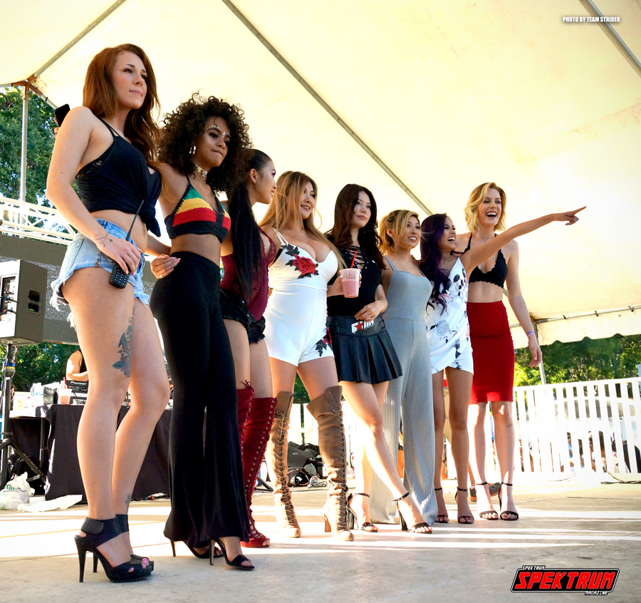Miss HIN winners from around the country