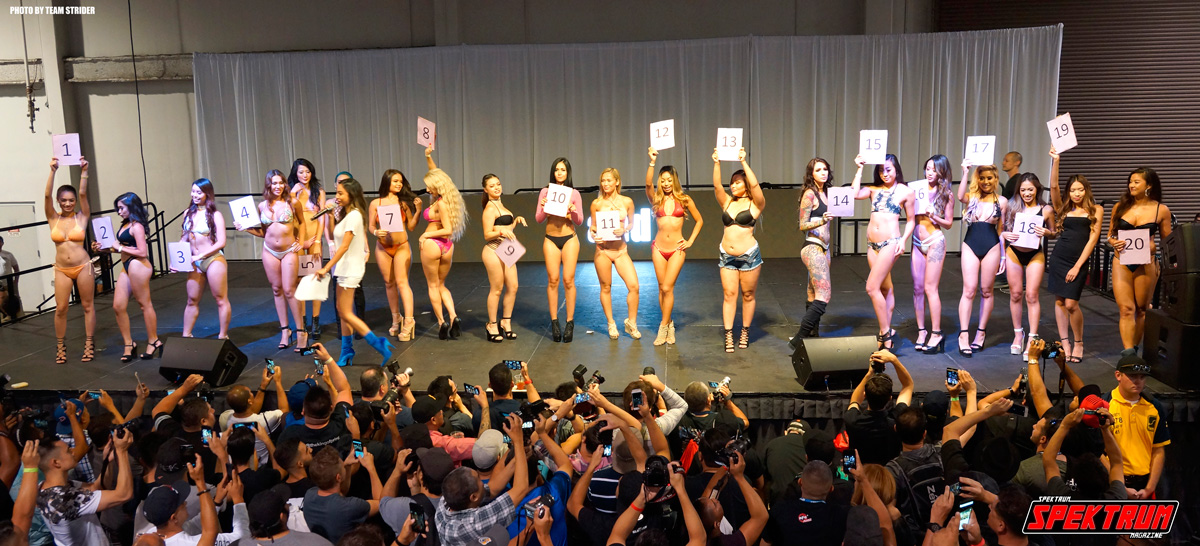 The full roster of bikini contestants. Who is your favorite?