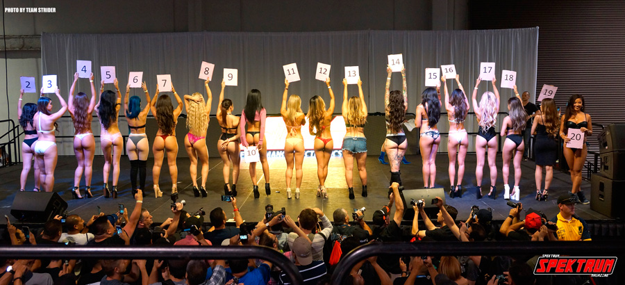A rear shot of all the bikini contestants for Spocom